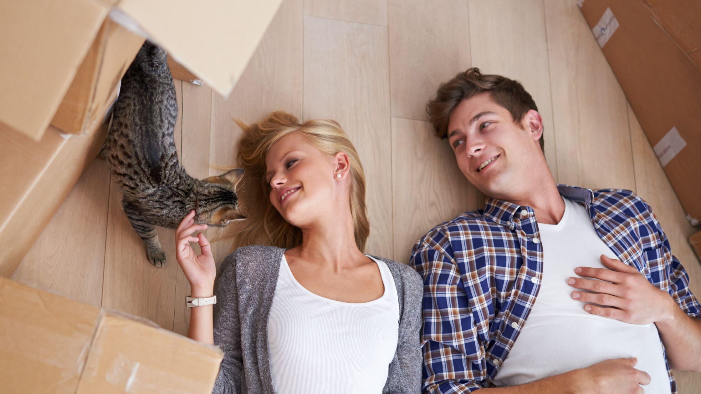 Junges Paar liegt zwischen Umzugskartons auf dem Boden. Sie streichelt die getigerte Katze.