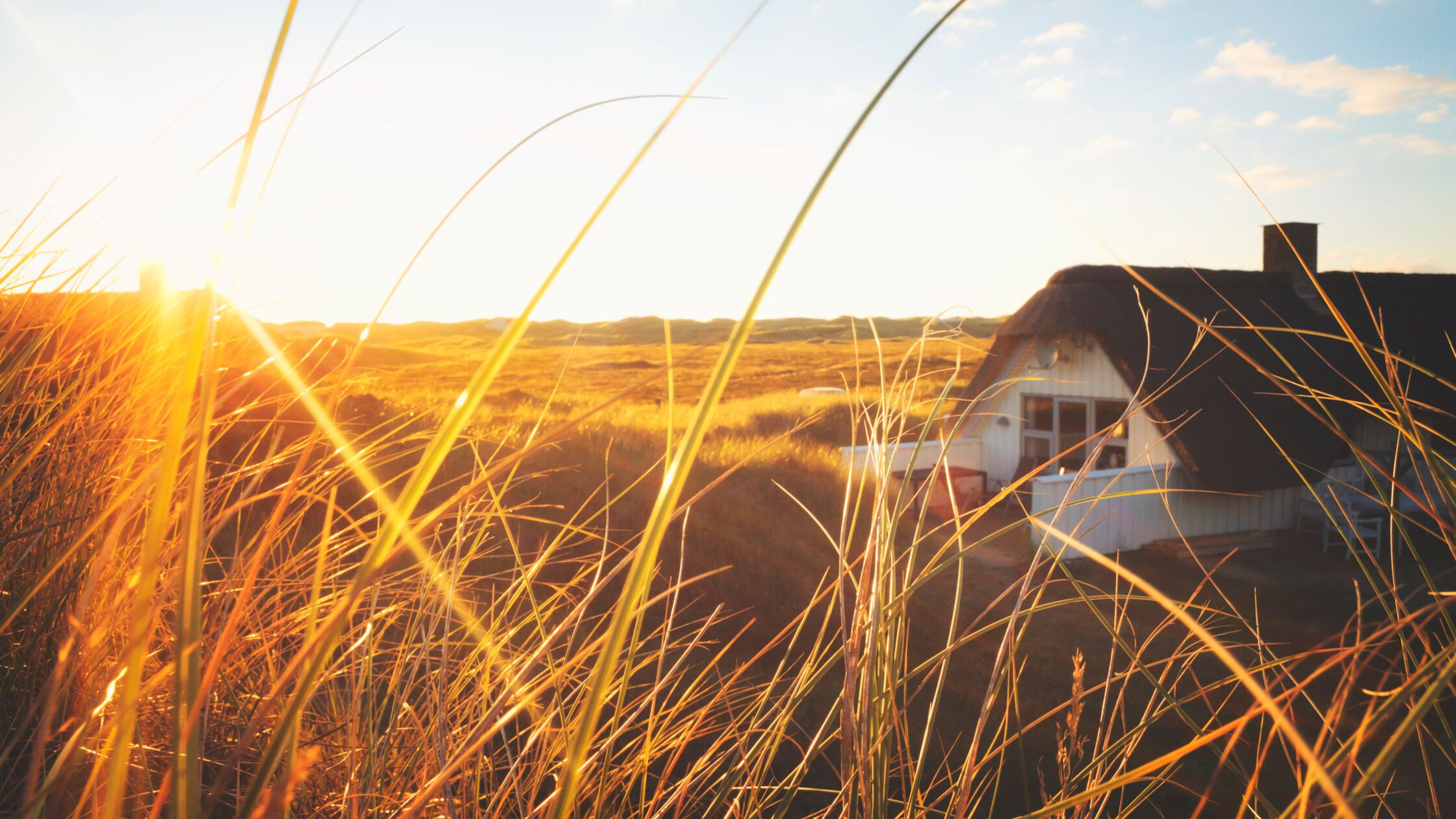 Reetdachhaus in den Dünen