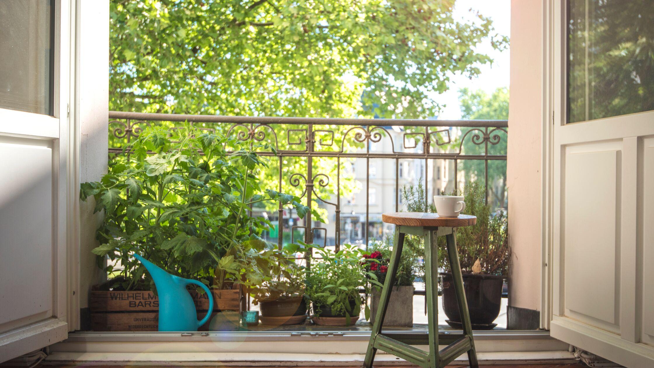 """Achtung: Das hier ist ein sogenannter """"französischer Balkon"""". Mit einem echten Balkon hat dieser kleine Vorsprung nichts zu tun."""