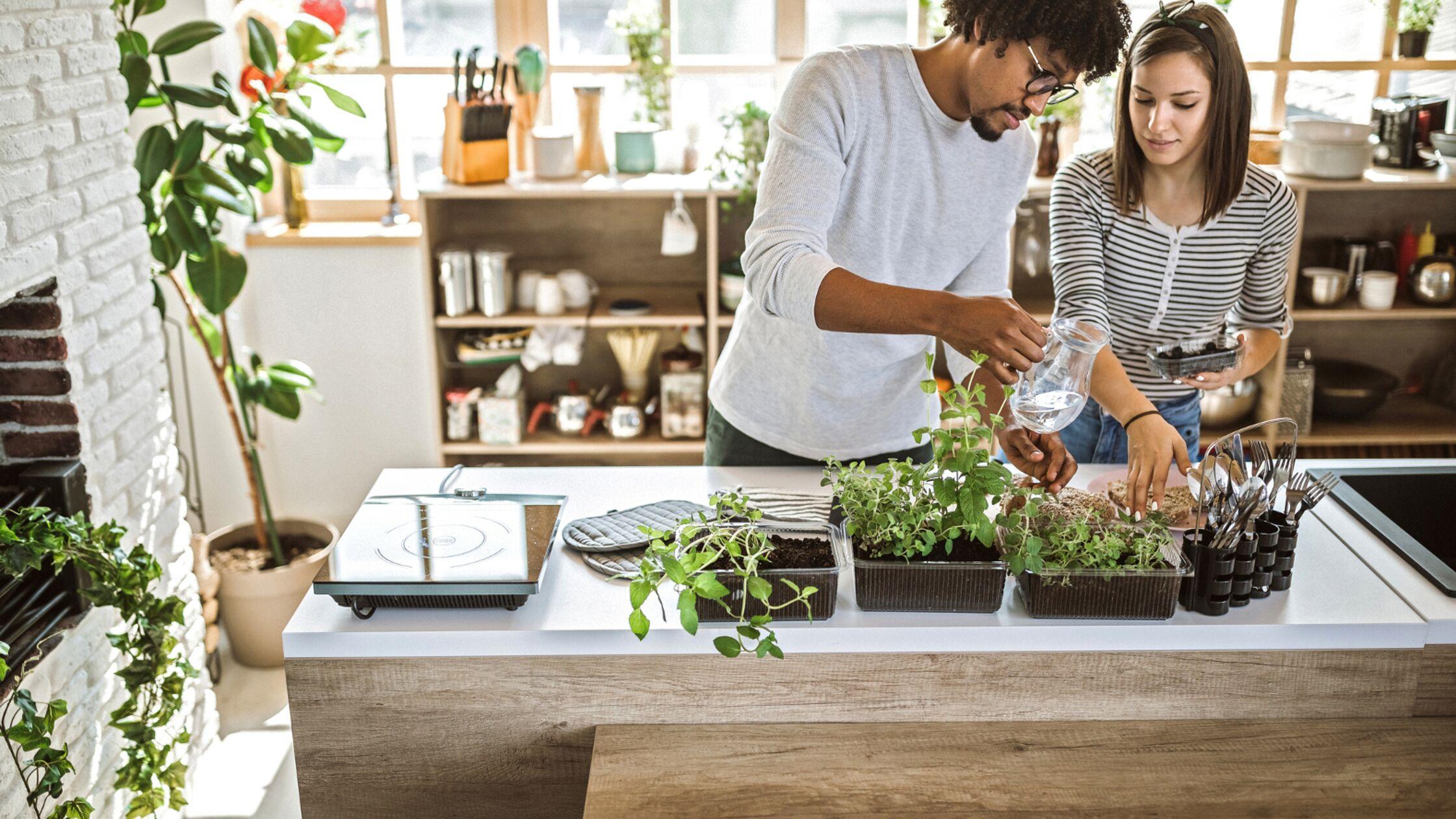 Wohnung nachhaltig einrichten: Tipps für ein umweltfreundliches Zuhause