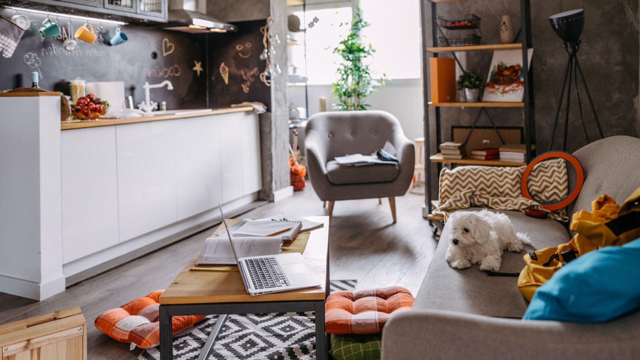 Einzimmerwohnung einrichten: Tipps für eine geschickte Raumaufteilung