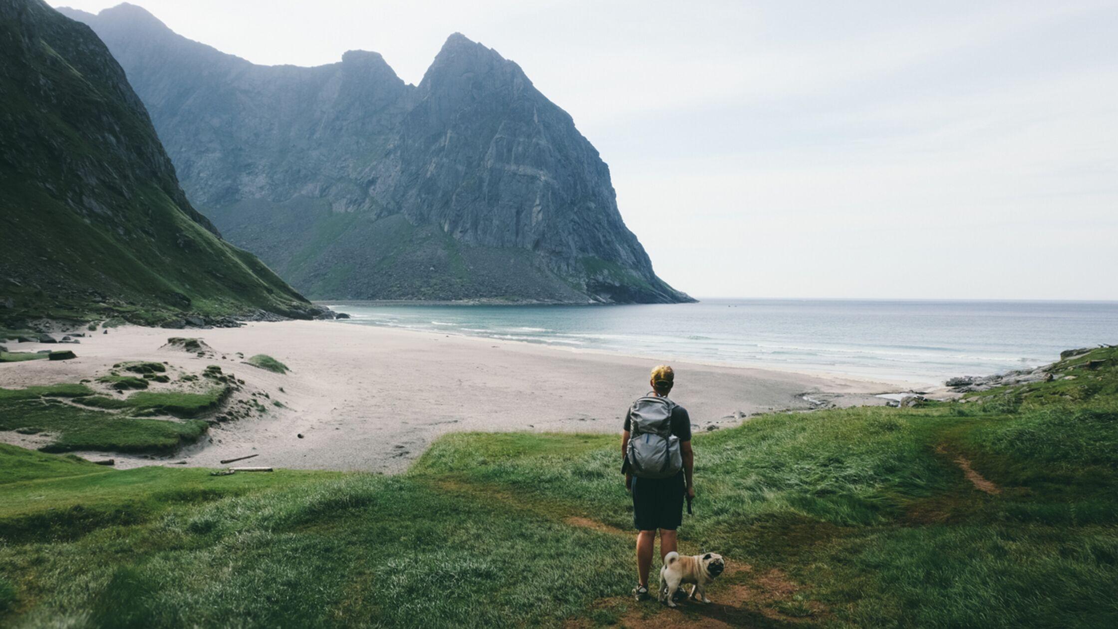 Auswandern nach Norwegen mit Haustier