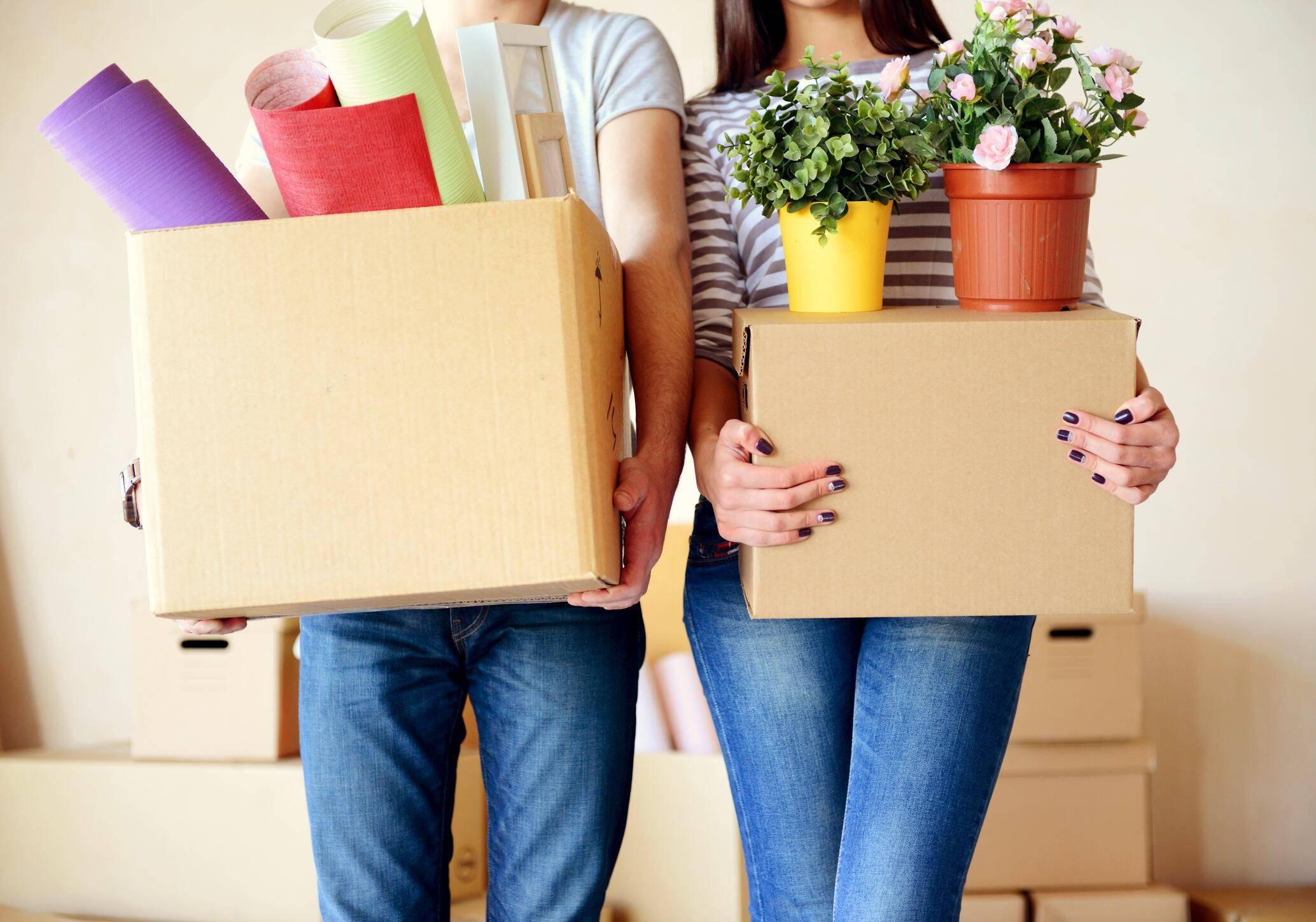 Fristlose Kündigung Der Wohnung: Ist Das Erlaubt?