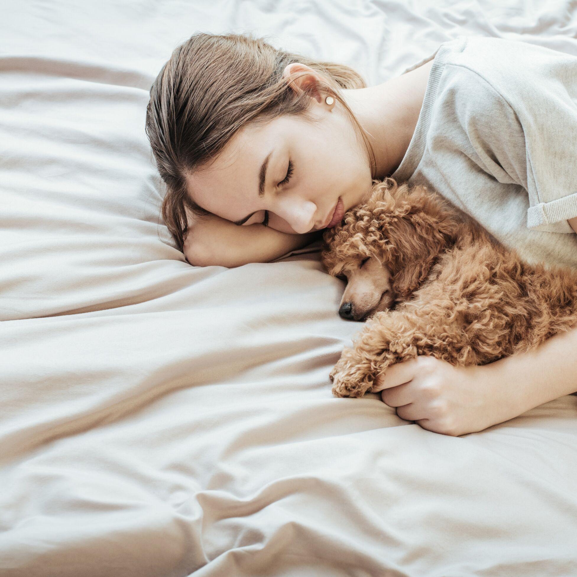 Junge Frau liegt auf dem Bett mit ihrem Pudel im Arm